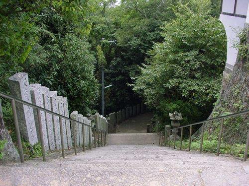上から見た階段.jpg