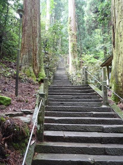 室生寺10「奥の院への道」.jpg