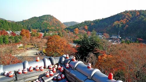 本堂からの眺め1.jpg