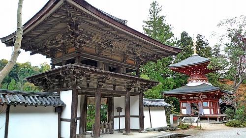 楼門と多宝塔.jpg