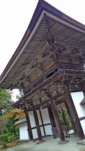 楼門(本堂から)2.jpg
